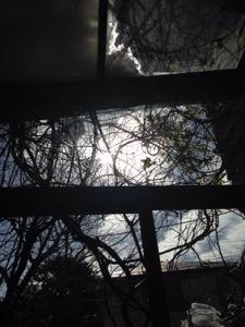 20140209-午前112726.jpg